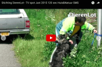 DierenLot video 1