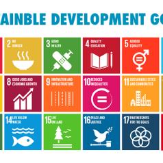 VN ontwikkelingsplan uitdaging voor non-profits