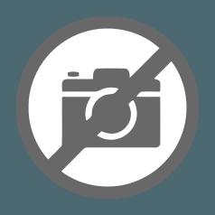 Weg met het windmolen-weiland