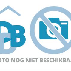 Michael Rutgers nieuwe voorzitter SGF