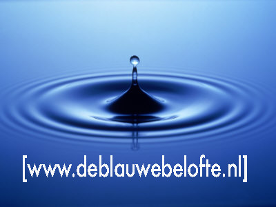 De Blauwe Belofte: de 'Nederlandse Giving Pledge'