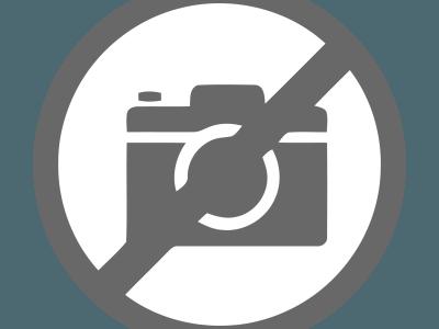 Michel assisteert bij een operatie van een gewond dier.