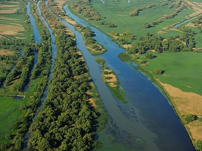 At least 40,000 hectares of unique Danube Delta landscape will be restored as a result of the Endangered Landscapes Programme grant.
