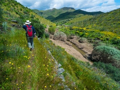 The Endangered Landscapes Programme grant will see a 120,000-hectare wildlife corridor developed in the Greater Côa Valley in northern Portugal.