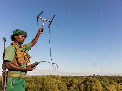 African Parks innovative