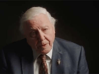 Sir David Attenborough, ambassadeur van The Lion's Share