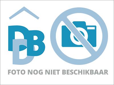 CAS International hield een stilte-actie tegen de stierenrennen van Pamplona op de Dam in Amsterdam.