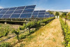 Bulgaria's renewables market goes from boom to bust