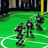 RoboCup 2013 Eindhoven. By  Ralf Roletschek. GNU Free License
