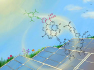 New molecular dye improves the efficiency of dye-sensitized solar cells. Image: Izumi Mindy Takamiya / University of Kyoto.