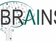 BRAINS Center: Brain Inspires Nanotechnology