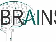BRAINS Center: Brain Inspires Nanotechnology
