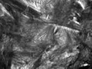Microstructure d'un échantillon de LC3 (ciment écolohique) à 28 jours d'hydratation © 2018 EPFL