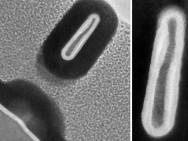 Een FinFET met een breedte van maar 3nm. Afbeelding: MIT