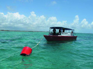 Nemo-Pi redt koraalriffen
