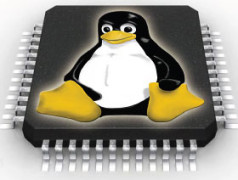 Linux on a Chip