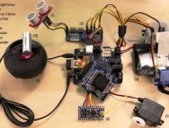 Rex, a Robot Development Platform