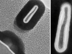 New microfabrication processes shrink transistors