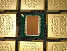 Brain-Chip von IBM