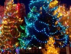 Es ist nie zu früh! Bauen Sie jetzt Ihren programmierbaren Weihnachtsbaum mit Arduino!