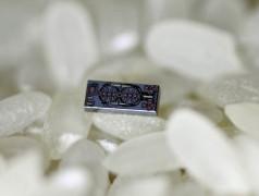 Winziges optisches Gyroskop im Vergleich mit Reiskörnern. Bild: Ali Hajimiri/Caltech