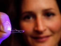 Kunststofffolie flattert im Licht