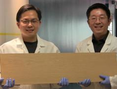 Liangbing Hu (links) und Teng Li (rechts) können Holz 10 mal stärker und zäher als bisher. Bild: University of Maryland.