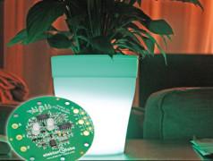 bio-lampe