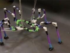Met insecten en spinnen als voorbeeld hebben Whitesides en Nemiroski met behulp van rietjes robots geconstrueerd die zich kunnen voortbewegen (foto: Joe Sherman / Whiteside Group).