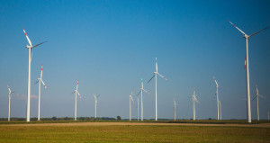 Wind Reports for Wind Farms