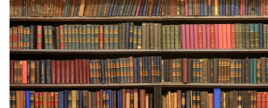 Pirate Libraries and the Future of Access