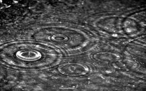 Rain On Command