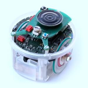 E-puck robot