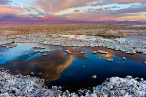 Salar de Atacama in Chile. By Francesco Mocellin. CC BY-SA 3.0 licence