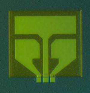 Compound-Speicherzelle (sie ist unten im Bild). Bild: lancaster.ac.uk
