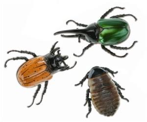 Vrais insectes ou faux robots ?