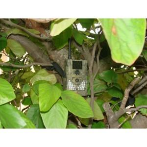 Caméra de surveillance sans abonnement