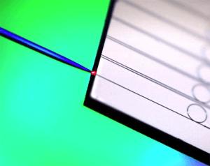 Des micro-résonateurs en nitrure de silicium sur un puce reliés à une fibre optique © Victor Brasch/Erwan Lucas/EPFL