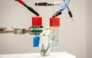 Produit à éliminer ou électrolyte valorisable ?