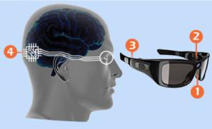 La caméra (1), dirigée par un détecteur de mouvement oculaire (2), envoie des signaux au processeur (3), lequel envoie des informations à l'implant cortical (4).