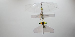 Robotlibelle ontwijkt zelf obstakels