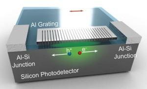 Biomimetische fotodetector 'ziet' in kleur