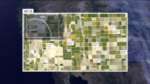 AxelGlobe: dagelijks nieuwe satellietfoto's van de hele aarde