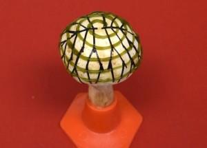 Een champignon bedekt met nanodraden en bacteriën kan licht in stroom omzetten (foto: American Chemical Society).