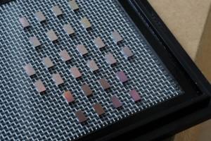 Chips voor optische spectrometrie. Afbeelding: FeliceFrankel, MIT.