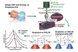 Detectie van ALS-biomarkers met grafeen. Afbeelding: Berry Research Laboratory, UIC