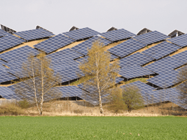 Energiewende: from Wunderkind to Troubled Adolescent