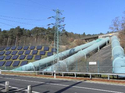 The Energy Transition Facing Technological Uncertainty
