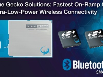 Blue Gecko for the IOT