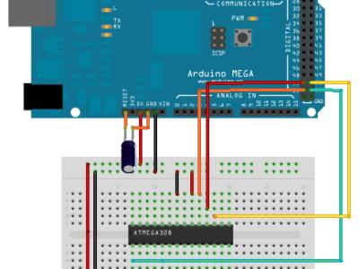mega-programmer-0.png